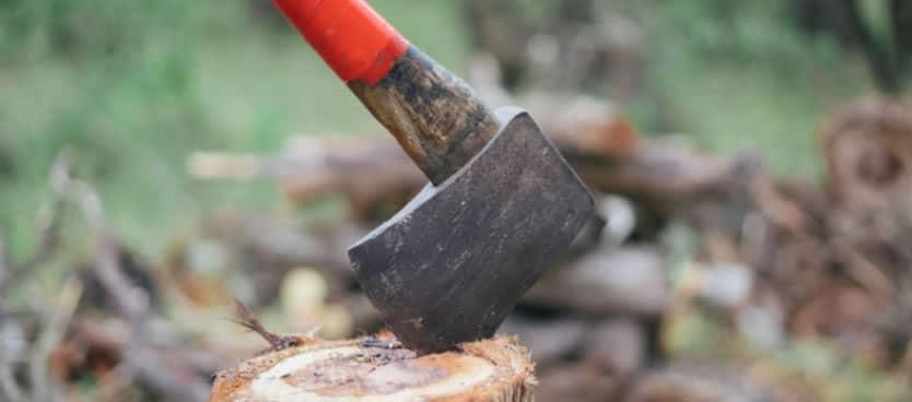 Unhurried - Axe chopping wood - Marcus 2229